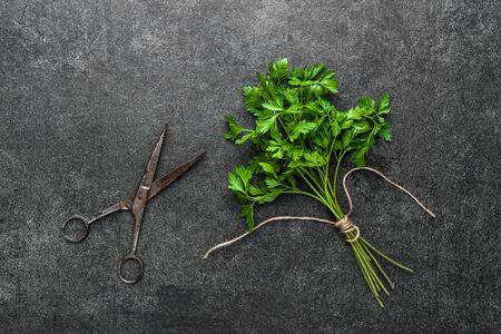 Frisch geerntetes Kraut der grünen Petersilie, frische Gartenkräuter auf dunklem Hintergrund Standard-Bild