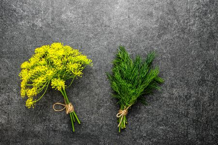 Fresh green dill herb and yellow dill flower on dark background