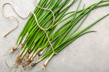 Green onion, fresh farm vegetables, organic produce freshly harvested in spring
