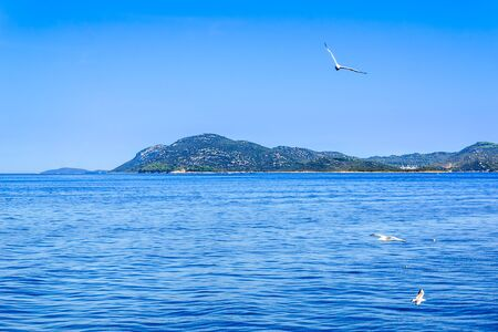 Adriatic Sea in Croatia, scenic view during the cruise in the Adriatic Sea. Vacation and travel concept.