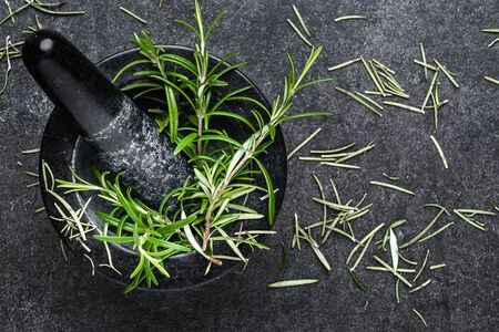 Fresh rosemary plant in mortar. Rosemary herbs on black background.