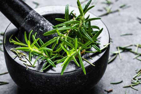 Fresh rosemary, closeup of kitchen herbs on dark background