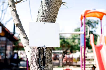 Empty white metal sign slung over tree