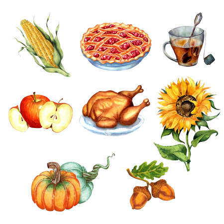 Set for Thanksgiving, harvest festival. Turkey, cherry pie, corn, sunflower, acorns, a cup of tea, apples and pumpkins. Watercolor illustration isolated on white background. Drawn by hand.