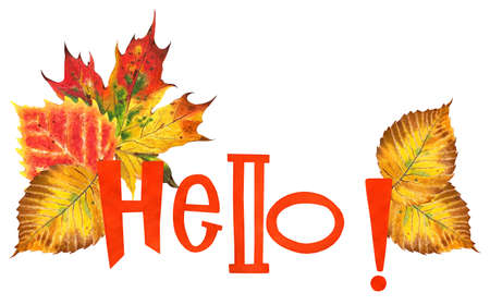 Orange text HELLO with autumn leaves. Maple, oak, elm and birch leaves. Autumn illustration. Isolated on white background. Hand-drawn.