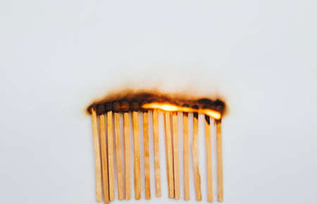 Matches stand in a row on a white background.Burning match.Bright fire from the tree.