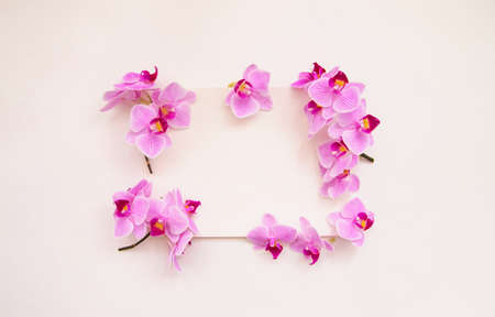 Frame of orchid flowers on a white background. The flowers are purple in color. An invitation or a postcard for a holiday. Empty space for the text. Foto de archivo