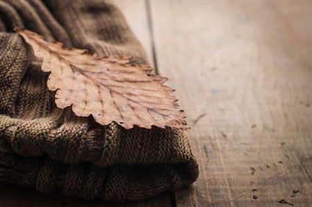estado del tiempo: De punto bufanda marrón otoñal lana y hoja seca de color amarillo