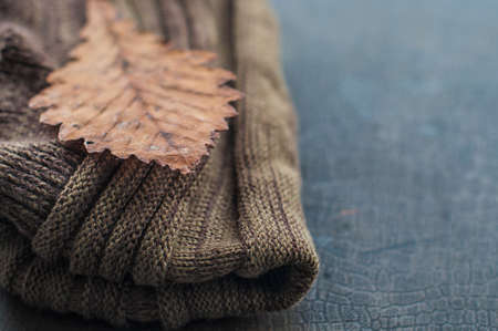 scarf: autumnal warm brown scarf and dry yellow leaf