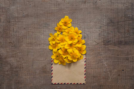 old envelope: beautiful flowers in the vintage envelope on old wooden table