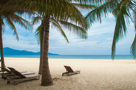 downshift: Sunbeds, with sand, blue sea and palms in the My Khe beach, Danang, Vietnam