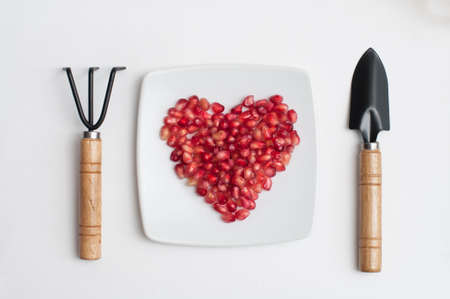 Red pomegranate juicy seeds in shape of heart in a dish and rake and shovel as fork and knife on white kitchen table Foto de archivo - 117939748