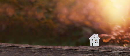 Tiny wooden house in a fall park Stockfoto