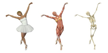 overlays: A 3D render of a ballet dancer, with muscles and skeleton. These images will line up exactly, and can be used to study anatomy.
