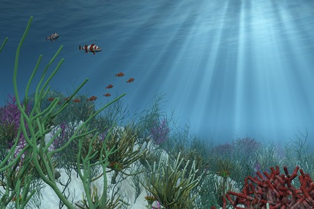 Undersea background - the right side of this image has been designed to provide space for placement of your text or an object. 3D render