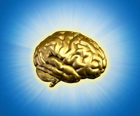 cognicion: Oro cerebro radiante - combina procesamiento 3D con pintura digital.  Foto de archivo