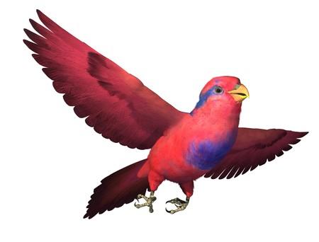 vol d oiseaux: 3D rendre illustrant un rouge et un bleu Lori en vol