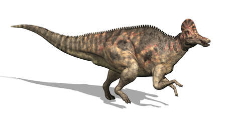 3D render depicting a Corythosaurus dinosaur, which lived during the Cretaceous period - isolated on white. Stock fotó