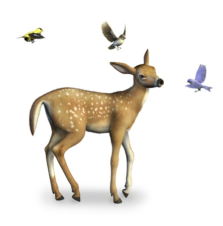 Fawn with Birds - 3d render.