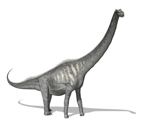 The Sauroposeidon dinosaur lived during the early Cretaceous period. This dinosaur was huge, it was around 112 feet long and weighed 55-66 tons.
