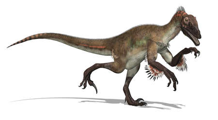 The Utahraptor dinosaur lived during the Early Cretacesous Period - 3d render. Stock fotó