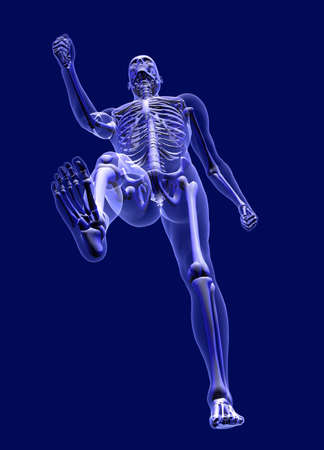 3D render simulating an Xray image of a man walking, as seen from below, blue background