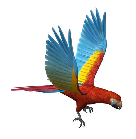 Scarlet Macaw Flying - 3D render Stock Photo