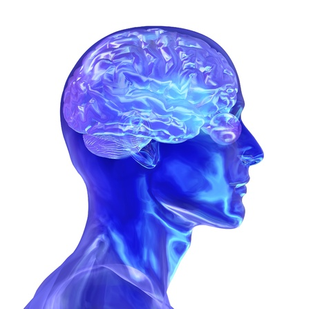 3d render of a glass male head with a brain.