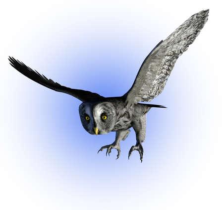 グレート灰色フクロウの 3 D レンダリング。