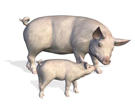 Mother Pig with Piglet - 3D render Stock fotó