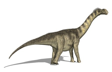 The Camarasaurus dinosaur lived in North America during the late Jurassic Period - 3D render. Фото со стока - 11851835