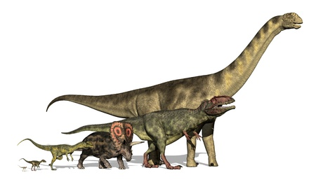 3d render revealing the huge variations in size among dinosaur species. Dinosaurs pictured are (from small to large) the Compsognathus, Ornitholestes, Dilophosaurus,Torosaurus, Giganotosaurus and the Camarasaurus. The tiny compsognathus was the size of a