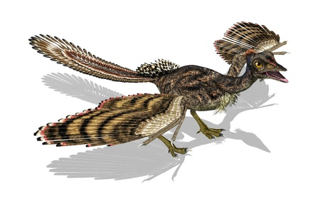 3D render featuring an archaeopteryx