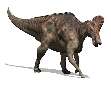 3D render depicting a Corythosaurus dinosaur, which lived during the Cretaceous period - isolated on white