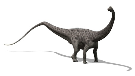 The diplodocus dinosaur lived in North America at the end of the Jurassic period - 3D render