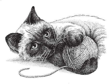 A siamese cat enjoys playing with a ball of yarn