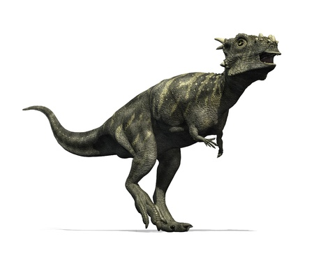 The Dracorex dinosaur lived in North America during the Late Cretaceous period - 3D render