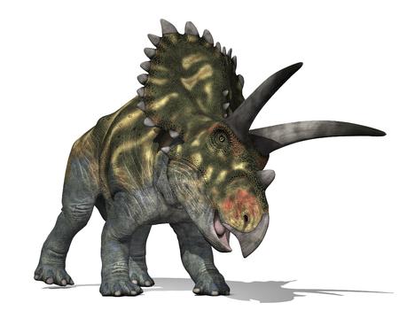 De Coahuilaceratops dinosaurus leefde in Mexico tijdens de Late Krijt - 3D renderen.