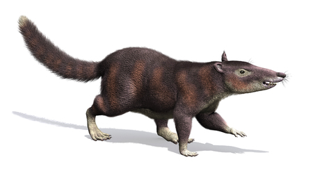 The cronopio is an extinct prehistoric mammal that lived during the Late Cretaceous Period, about 99 million years ago.