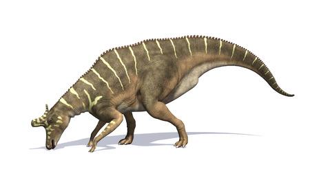 Lambeosaurus는 Cretaeous 기간 -3d 렌더링 동안 살았던 공룡이었다. 스톡 콘텐츠
