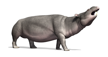 Moeritherium は象に関連付けられている先史時代の哺乳動物です。それは 3000 万年前に - 3 d のレンダリングを住んでいた。