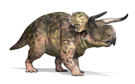 The Nasutoceratops was a dinosaur that lived during the Cretaceous period - 3d render.