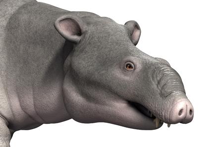 Moeritherium の肖像画。Moeritherium は象に関連付けられている先史時代の哺乳動物です。それは 3000 万年前に - 3 d のレンダリングを住んでいた。 写真素材