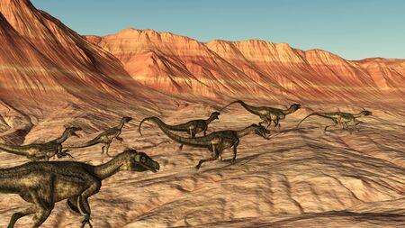 A group of Ornitholestes dinosaurs roam across a rocky desert landscape - 3D render.
