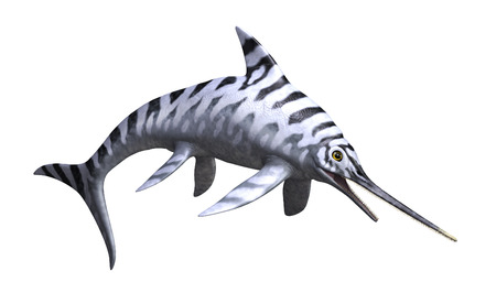 The Eurhinosaurus was a prehistoric undersea reptile that lived during the Jurassic Period - 3d render.