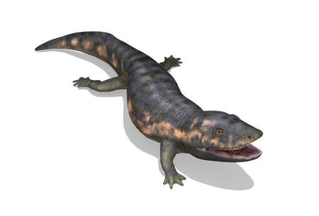 The dendrerpeton was a prehistoric amphibian that lived during the Paleozoic period - 3d render.