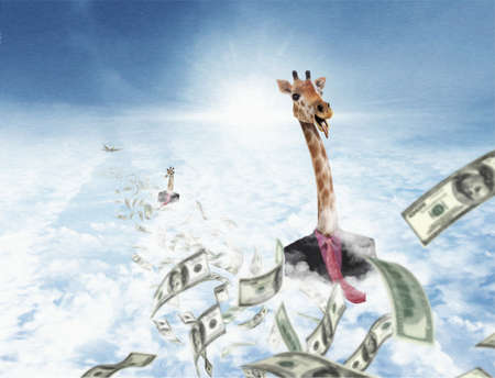 Successful Giraffes chasing money in the clouds photo