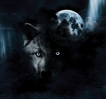 superstition: Dark Wolf and full moon Stock Photo