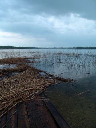 lake rushy photo