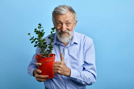 happy senior man in blue shirt holding flower pot and showing thumb up,interets, plant, flower crae, lifestyle concept.